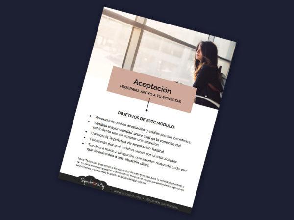 Workbook de Aceptación